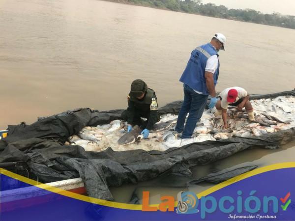 """3.000 kilos de especies pesqueras tipo """"sapuara"""" fueron aprehendidos por la policía fiscal y aduanera"""