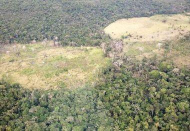 Acciones para proteger la Amazonia se definirán en Leticia