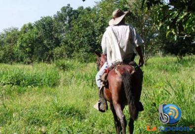 Reportan desaparición de campesino Tameño en Arauquita
