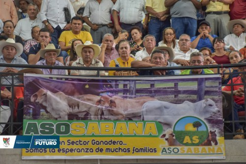 Arauca por su vocación ganadera debe ser atendida de manera urgente por el Gobierno Nacional: dijo gobernador en reunión con gerente general del ICA