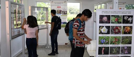 Abiertas inscripciones a los programas de posgrado Especialización en Ingeniería Hidráulica y Ambiental y Especialización en Vías y Transporte en Arauca