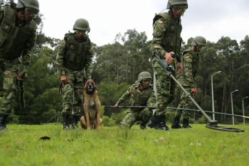 El flagelo de las minas antipersonal en Arauca