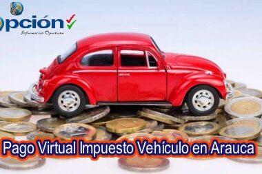A través de las páginas virtuales desde casa se puede realizar la liquidación del impuesto de vehiculo como también el pago