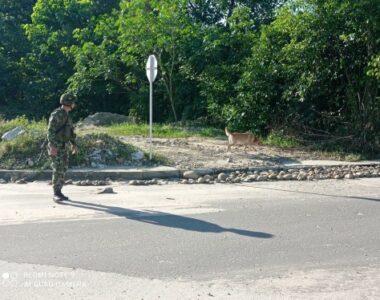 Rápida reacción del Ejército Nacional permitió salvar a dos líderes sociales en Saravena, Arauca
