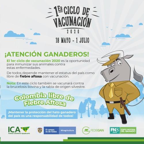 Vacunadores, ganaderos y médicos veterinarios del sector pecuario deben seguir lineamientos para el manejo y control de riesgo del covid-19