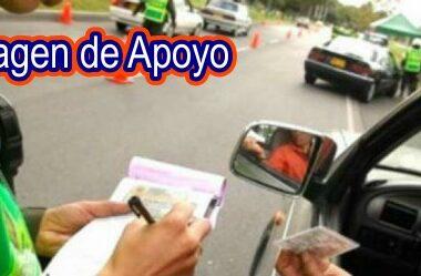 Ciudadano interpuso queja ante la Procuraduría contra la Directora del Instituto de Tránsito y Transporte del municipio de Tame