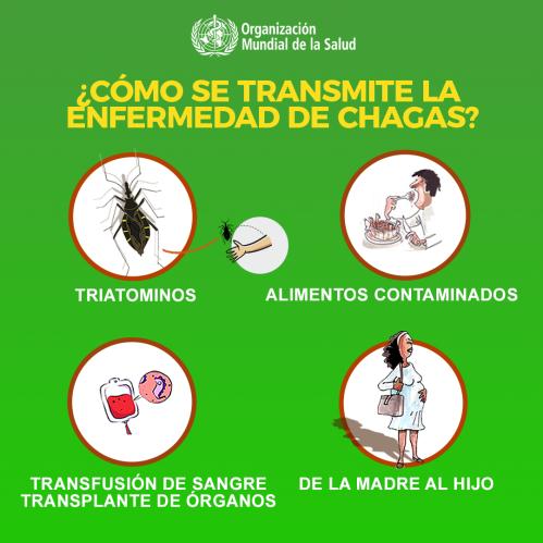Conozca sobre la enfermedad de Chagas